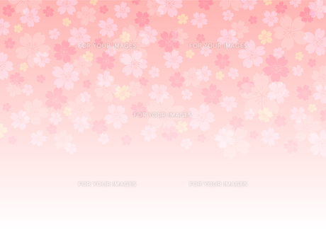 桜柄 背景イラスト・春のイメージのイラスト素材 [FYI01219653]