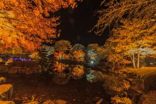 秋の桜山公園の風景の写真素材 [FYI01219926]
