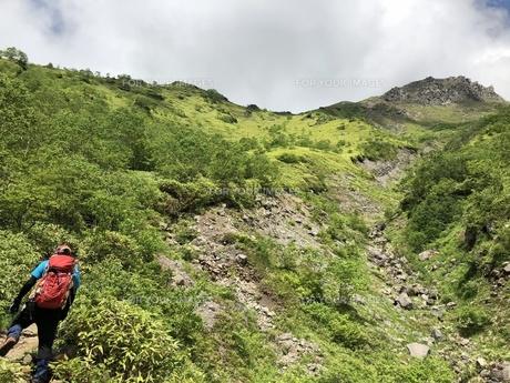 山頂を目指すの写真素材 [FYI01220014]