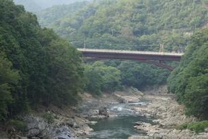 保津峡トロッコ列車からの車窓風景(保津峡)の写真素材 [FYI01220179]
