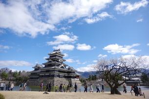 松本城の写真素材 [FYI01220271]