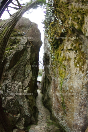 岩の細道の写真素材 [FYI01220288]