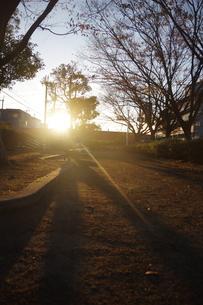 夕暮れのベンチの写真素材 [FYI01220335]