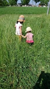 草原で冒険の写真素材 [FYI01220495]