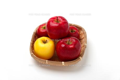 白い背景にリンゴ、日本のリンゴの写真素材 [FYI01220652]