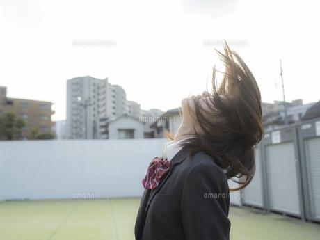 見上げる女子高校生の写真素材 [FYI01220723]