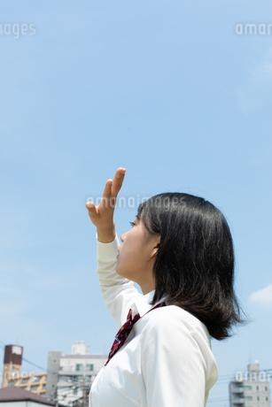 太陽に手をかざす女子高校生の写真素材 [FYI01220726]