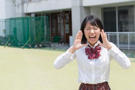 大声で叫ぶ女子高校生の写真素材 [FYI01220728]