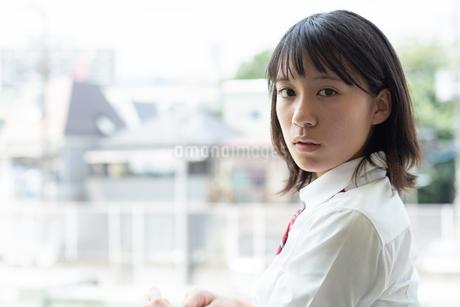 女子高校生のポートレートの写真素材 [FYI01220745]