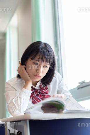 教室で勉強する女子高校生の写真素材 [FYI01220762]