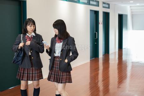 学校の廊下を歩く2人の女子高校生の写真素材 [FYI01220770]