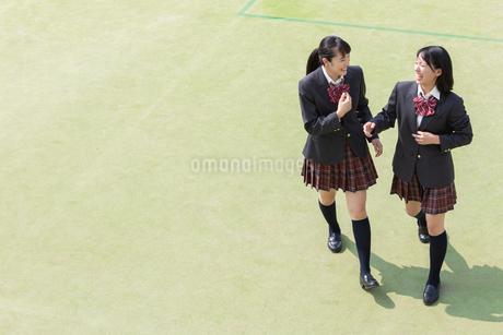 校庭で会話する2人の女子高校生の写真素材 [FYI01220783]