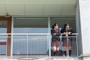 外を眺める2人の女子高校生の写真素材 [FYI01220791]
