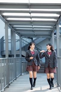 会話しながら歩く2人の女子高校生の写真素材 [FYI01220797]