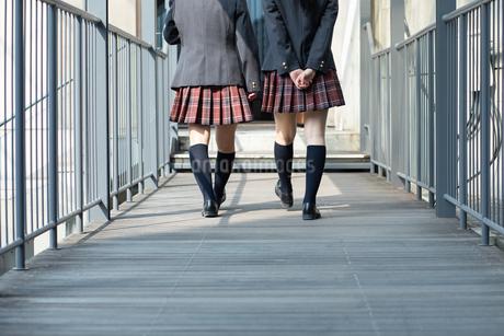 会話しながら歩く2人の女子高校生の写真素材 [FYI01220798]