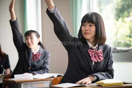 授業を受ける女子高校生の写真素材 [FYI01220834]