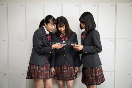 スマートフォンを見る3人の女子高校生の写真素材 [FYI01220843]