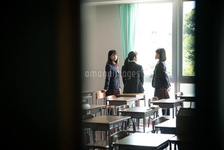 教室で会話する3人の女子高校生の写真素材 [FYI01220847]