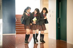 廊下を歩く3人の女子高校生の写真素材 [FYI01220853]