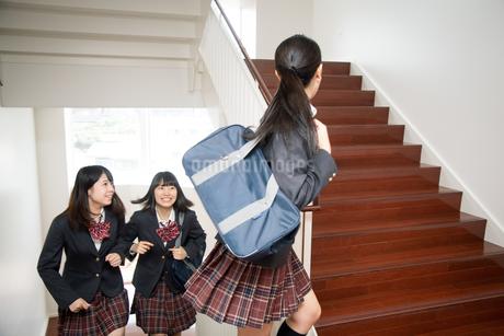 階段を駆け上がる3人の女子高校生の写真素材 [FYI01220867]