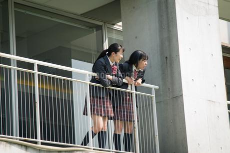 2人の女子高校生の写真素材 [FYI01220919]