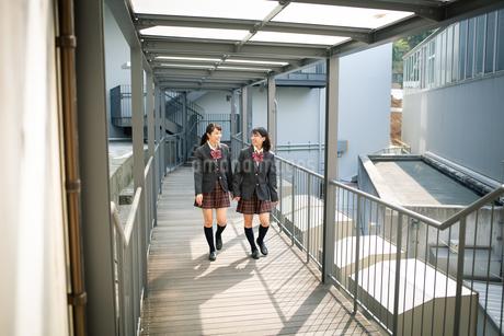 校内を歩く女子高校生の写真素材 [FYI01220931]