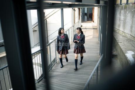 校内を歩く女子高校生の写真素材 [FYI01220933]