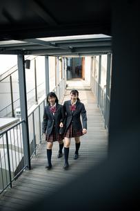 校内を歩く女子高校生の写真素材 [FYI01220935]