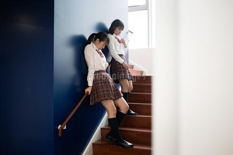 階段で会話する2人の女子高校生の写真素材 [FYI01220965]