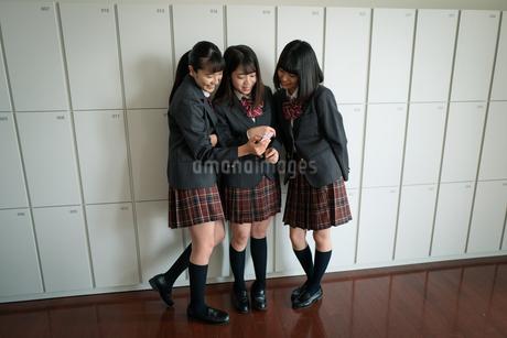 スマートフォンを見る女子高校生の写真素材 [FYI01220972]