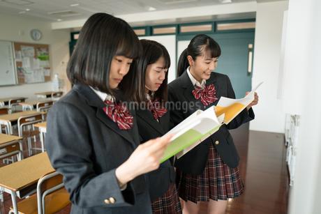 ノートを見る女子高校生の写真素材 [FYI01220975]