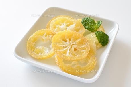 ドライレモンの写真素材 [FYI01221144]
