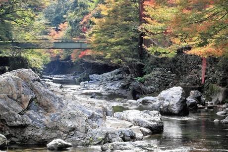 京都高雄清滝の紅葉の写真素材 [FYI01221159]