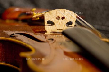 バイオリンの写真素材 [FYI01221200]