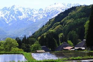 白馬村の美しい風景の写真素材 [FYI01221459]