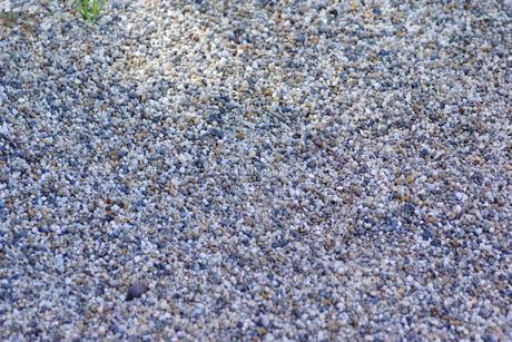 砂利の写真素材 [FYI01221519]