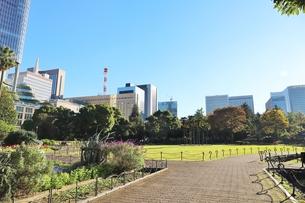 日比谷公園から都会の風景を眺めるの写真素材 [FYI01221685]