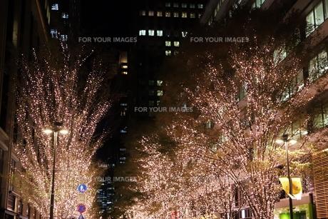 東京駅界隈の紅葉とライトアップの写真素材 [FYI01221706]