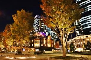 東京駅界隈の紅葉とライトアップの写真素材 [FYI01221709]