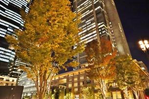 東京駅界隈の紅葉とライトアップの写真素材 [FYI01221715]