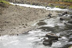 キラキラ光る川の写真素材 [FYI01221874]