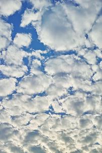 縦位置の隙間雲の写真素材 [FYI01222239]