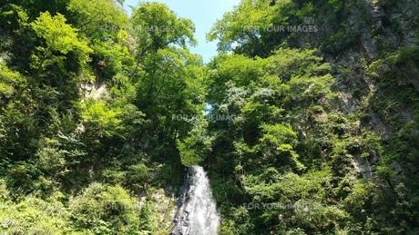 滝の写真素材 [FYI01222354]