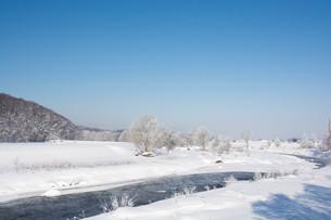 寒い冬の朝の川の写真素材 [FYI01222365]