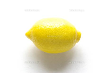 横位置で白バックのレモンの写真素材 [FYI01222384]