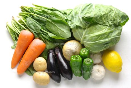 横位置で白バックの野菜の集合写真の写真素材 [FYI01222385]