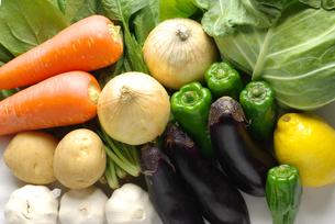 横位置の野菜の集合写真の写真素材 [FYI01222386]