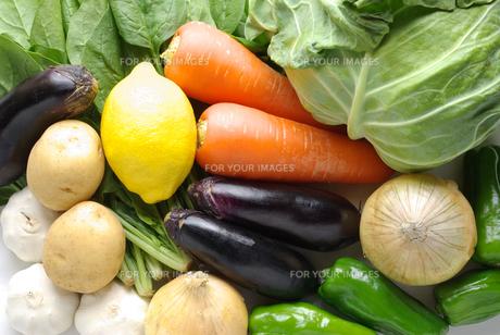 横位置の野菜の集合写真の写真素材 [FYI01222387]