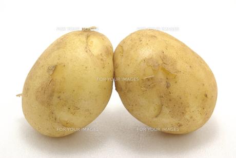 横位置で白バックの二つのジャガイモの写真素材 [FYI01222394]