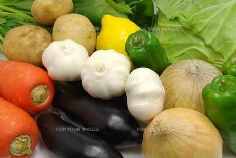 横位置のたくさんの野菜の写真素材 [FYI01222397]